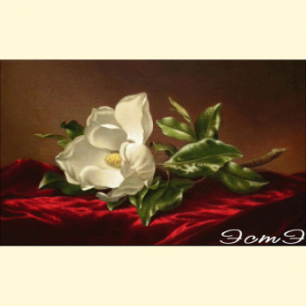 067  Magnolias on Red Velvet Cloth