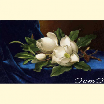 068  Giant Magnolias on a Blue Velvet Cloth