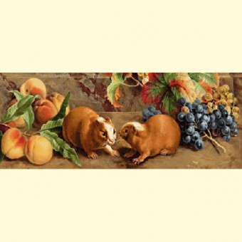 235.1 Still Life with Guinea Pigs (f) - pattern