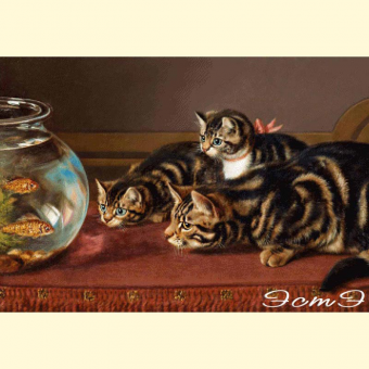 092 Cats by a fishbowl