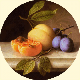 002 Still Life with Peach and Prunes (round)